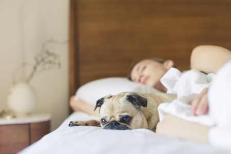 Cum influenteaza somnul sanatatea creierului